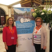 International stillbirth alliance; Workshop